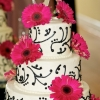 White Cake with Chocolate Scroll Work, Take Two!