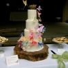 Butterfly Cake with Nest Topper