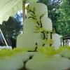 Yellow Blossom Wedding Cake