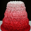 Ombre Pink Roses Cake