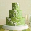 Bright Green Wedding Cake with Dogwood Blossoms