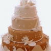 Sand Colored Ombre Seashell Cake