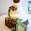 Love Birds and Succulents Wedding Cake