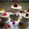 Wedding Cake DIY: Gerbera Daisies on Separated Tiers