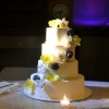 Blue and Yellow Flower Cake with Plumeria