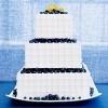 Summertime Lemon Blueberry Wedding Cake