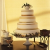 China Pattern Inspired Wedding Cake