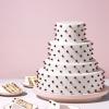 Chocolate Chip Wedding Cake