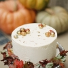Rustic Fall Cake with Acorns