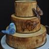Rustic Fall Wedding Cake