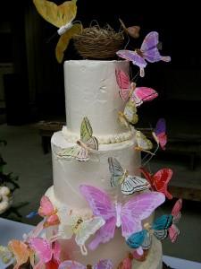 Final Cake: portrait details 5