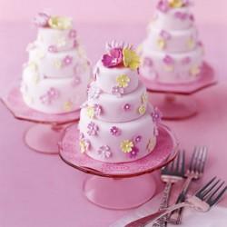 mini-s-wedding-cake-2285