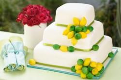 Erica O'Brien Lemon and Lime Cake