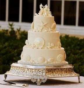 White on white seashell wedding cake