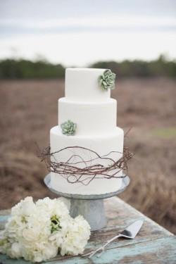 Succulent and Bramble Wedding Cake