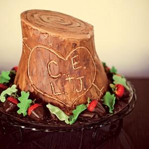 Tree Trunk Grooms Cake