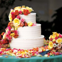 jaime king cake