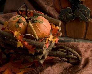 Pumpkin1-L