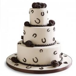 horseshoe-wedding-ideas-4