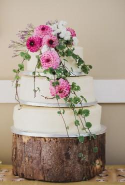 zinnia cake
