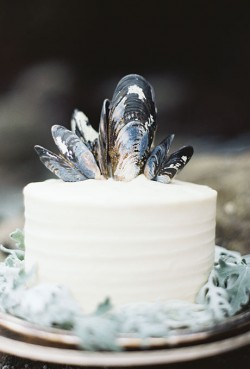 cake with shells