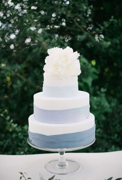 blue and white cake2